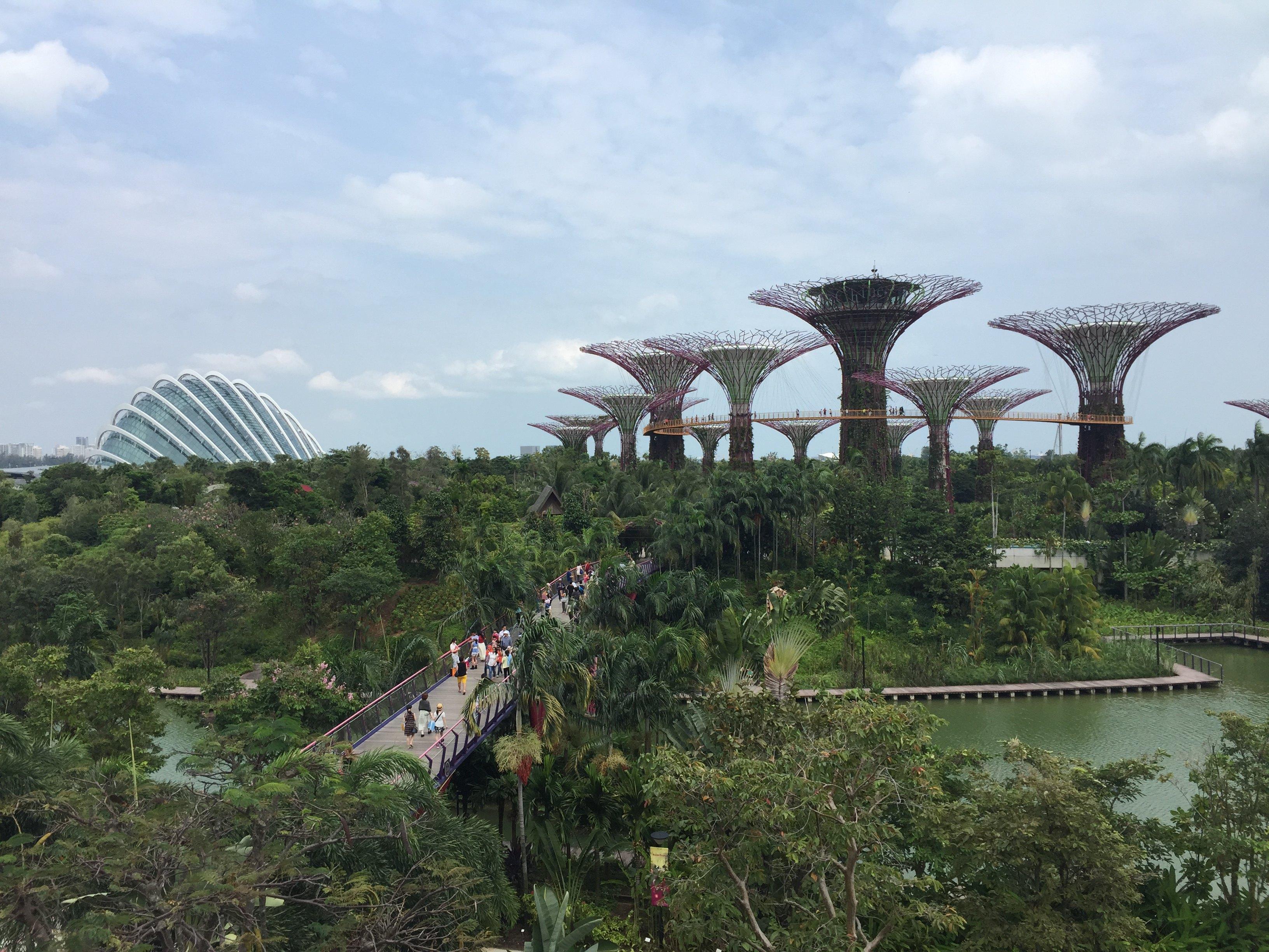 一座为大自然注入未来感的海湾花园,是滨海湾最新的热门场所,也是当前新加坡最新的植物园。现在好像只有南部园区开往,擎天大树带着七彩缤纷的科幻色彩,以及种植了多种濒危植物的未来主义温室都是绝对的亮点。 刚拿到狮城全景通的时候,看到里面写明是包括滨海湾花园的门票。所以让我一直误认为进入园区是需要门票的。 门票其实是免费!温室才需要门票$28(就是我标记红色圈的地方,可以换票),空中的走道$5,也包含在全景通里面,不过也需要在温室换。 到达Bayfront地铁站的时候已经20:00,之前已经知道每天19:30和2