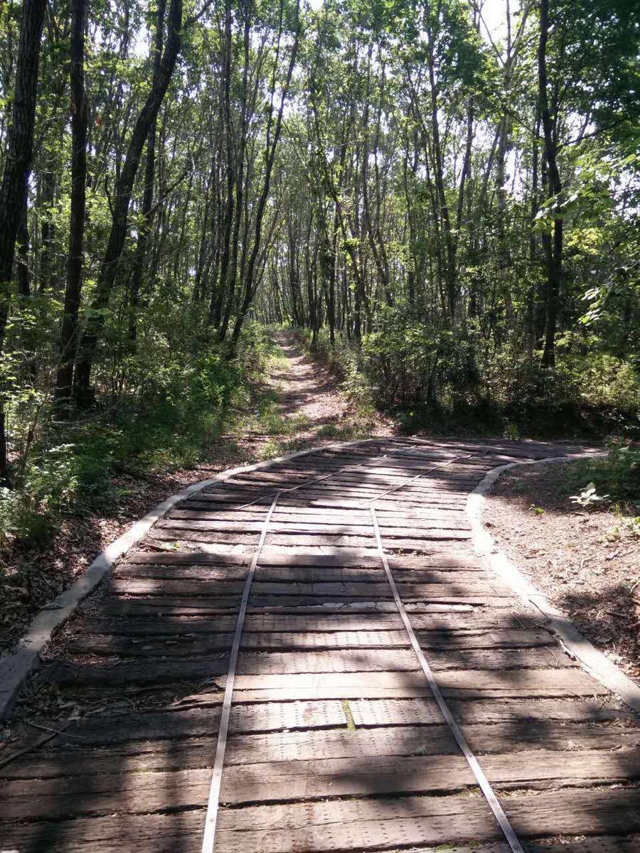 【携程攻略】黑龙江北方森林动物园家庭亲子点评
