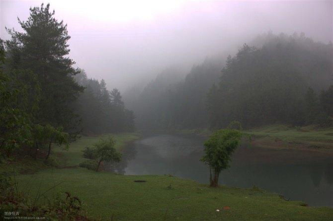 野梅岭森林公园图片
