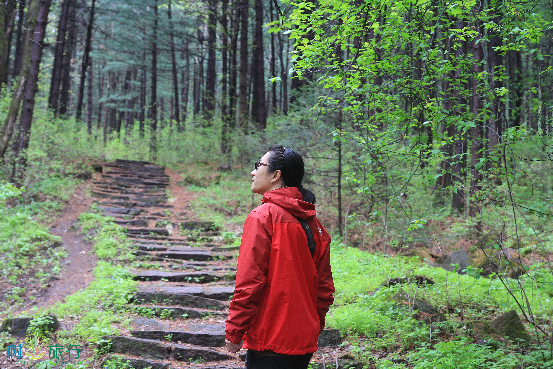 兴安森林公园图片