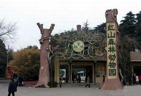 红山森林动物园,南京红山森林动物园攻略/地址/图片
