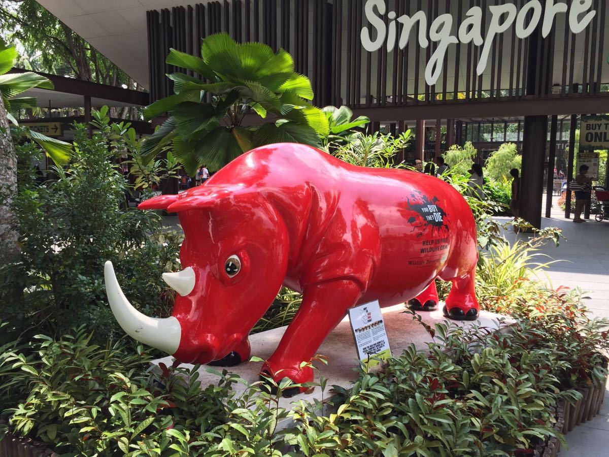 【携程攻略】新加坡新加坡动物园家庭亲子点评