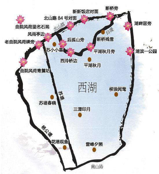 旅行安全#杭州哪里看荷花最好?西湖曲院风荷吗?