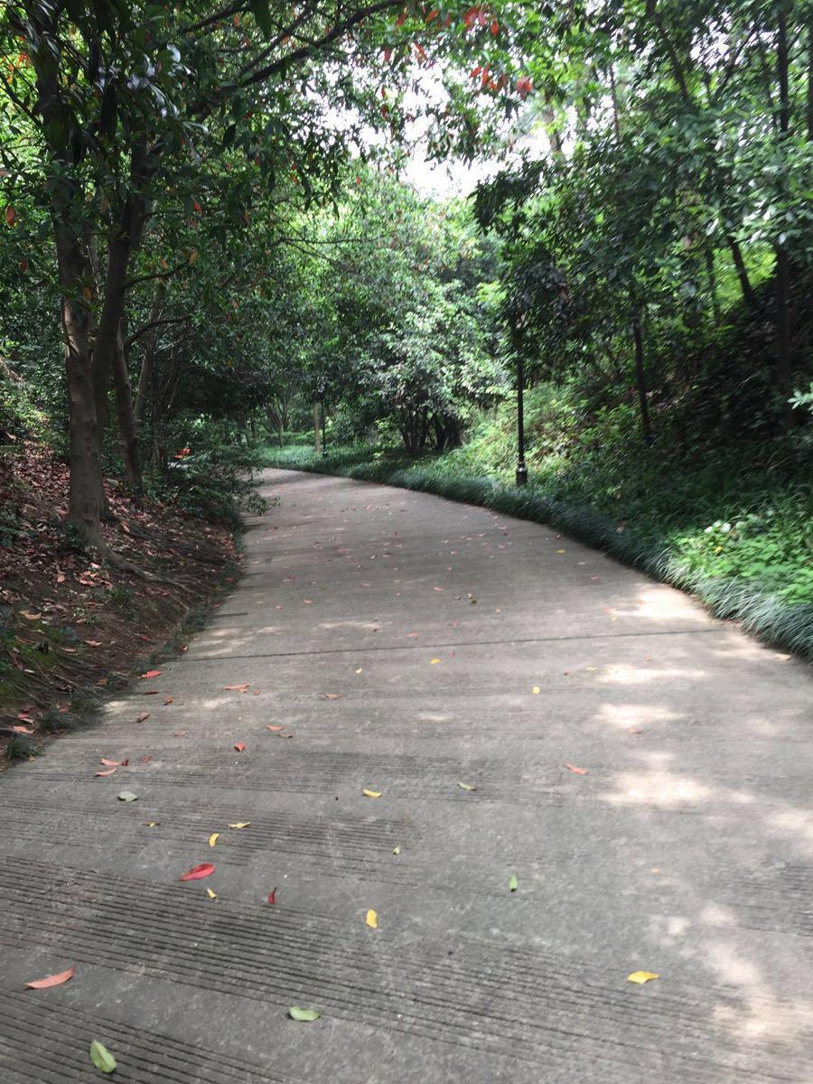 【携程攻略】杭州少年儿童公园景点,在杭州动物园的,.