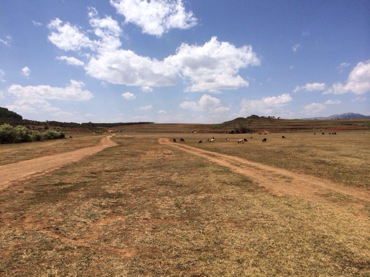 北大营草原旅游景点攻攻略最囧的游戏2第45关略图图片