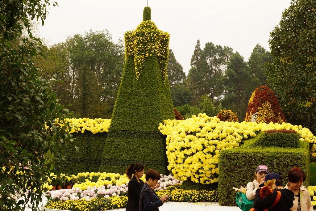 杭州植物园(7)