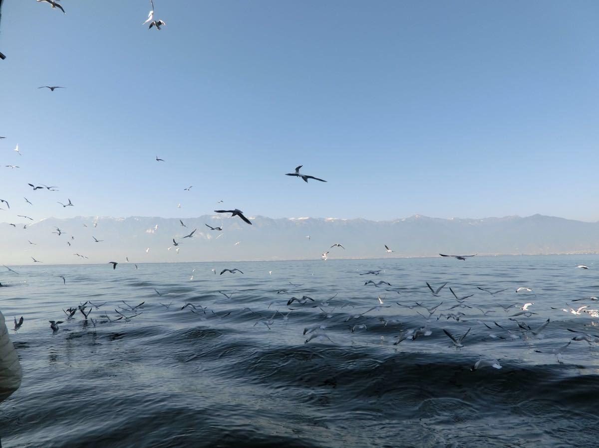 【携程攻略】大理洱海大游船怎麼样/好玩吗
