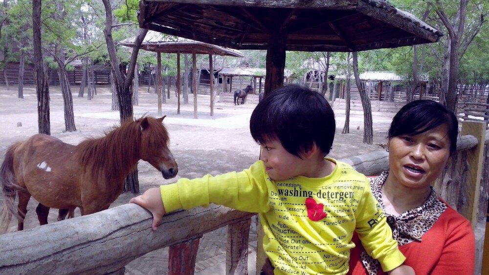 【携程攻略】山西太原动物园景点