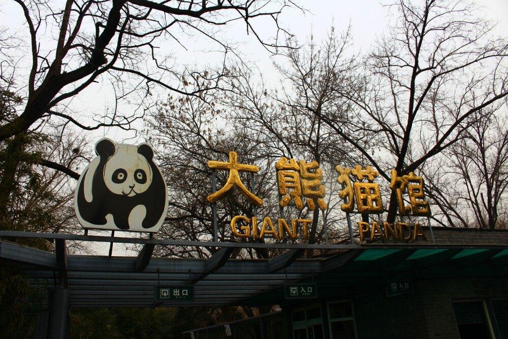 北京动物园,北京北京动物园攻略/地址/图片/门票