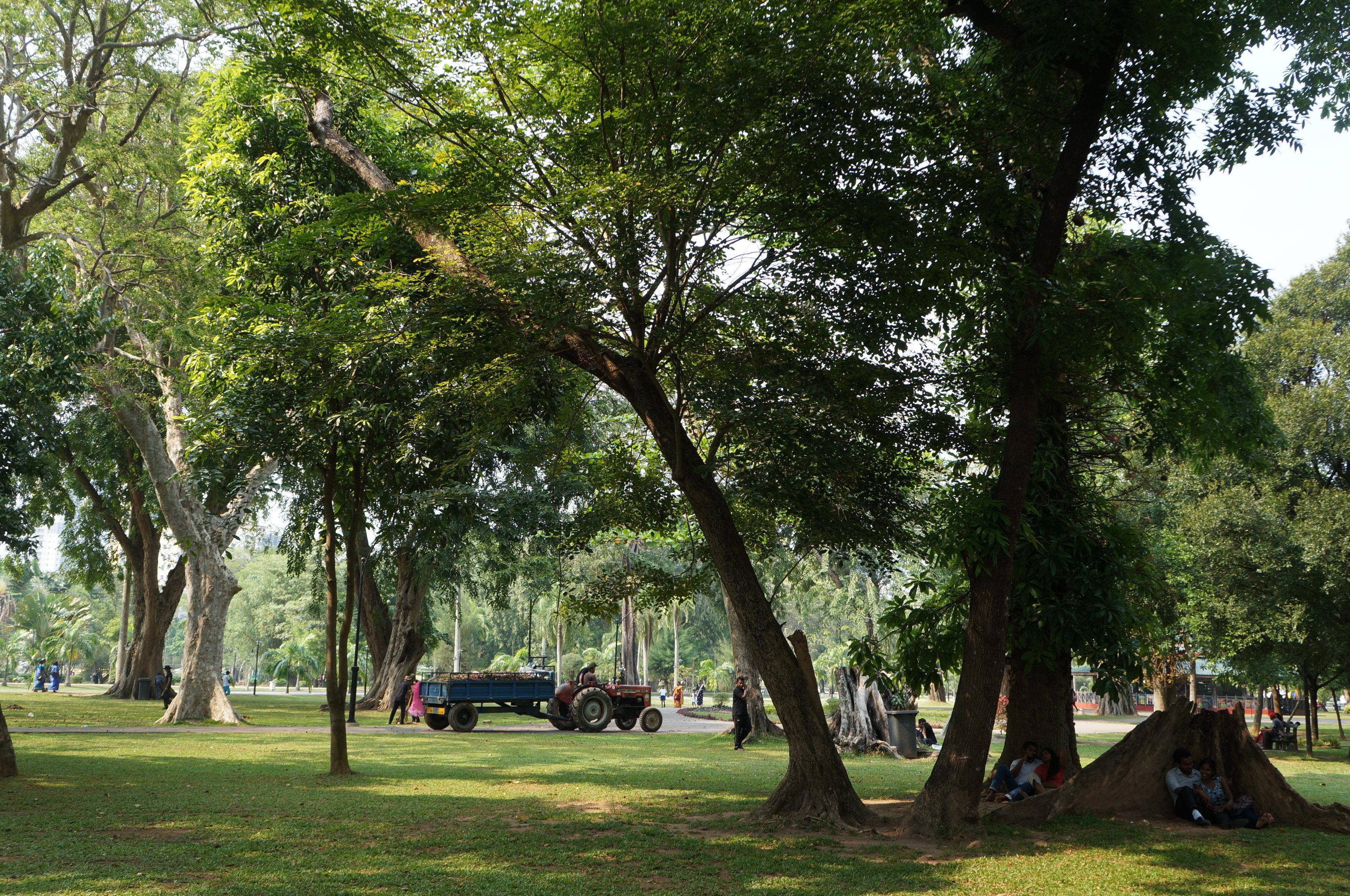 景点介绍维哈马哈德维公园位于独立广场北侧,公园的东边是科伦坡市政厅,南边是艺术馆,北边不远处有著名的冈嘎拉马寺庙。这里环境优美,有棕榈树,大树和绿地,是当地人散步锻炼的好地方。每到周末,公园南面马路上会有很多街头艺术家的画作出售。[1]环境优美维哈马哈德维公园是科伦坡最大的公园。公园中有大片的绿地、参天大树等热带植物及喷泉、雕塑等装饰,还有一座金色的佛像。漫步在这座公园中,不仅可以享受到清新优雅的自然环境,还常能看到在此骑车、聊天、野餐甚至拍婚纱照的当地居民。这个科伦坡