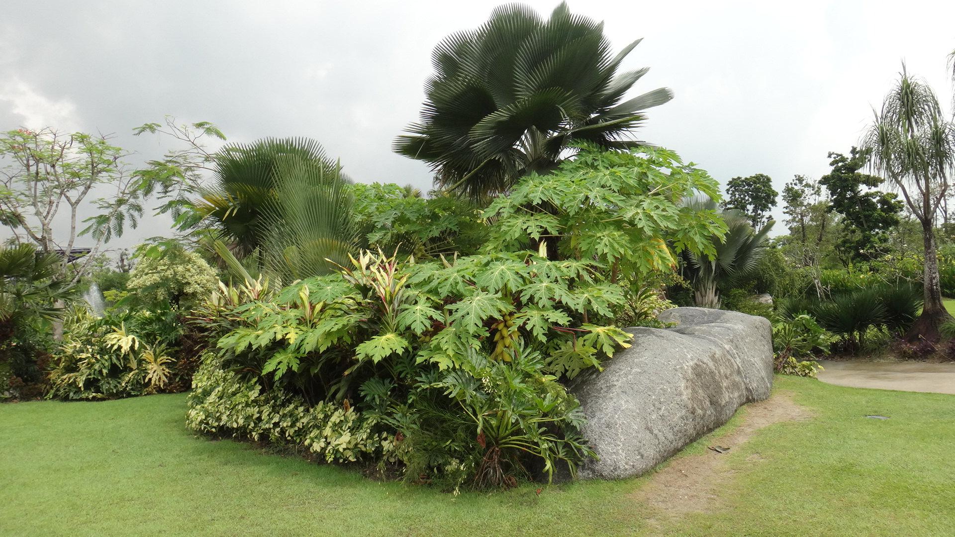 【携程攻略】新加坡新加坡滨海湾花园适合家庭亲子吗