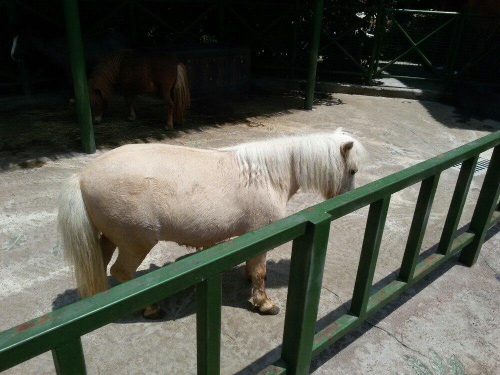 【携程攻略】浙江杭州野生动物世界适合情侣出游旅游