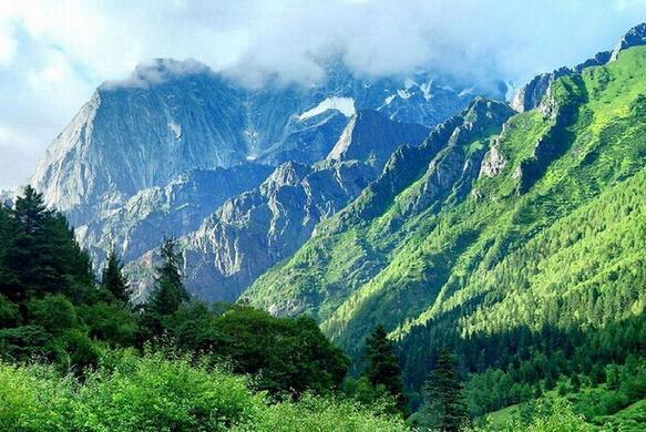卧龙自然保护区,阿坝卧龙自然保护区攻略/地址/图片