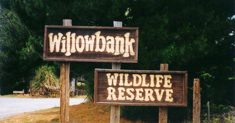 柳岸野生动物保护区,基督城柳岸野生动物保护区攻略
