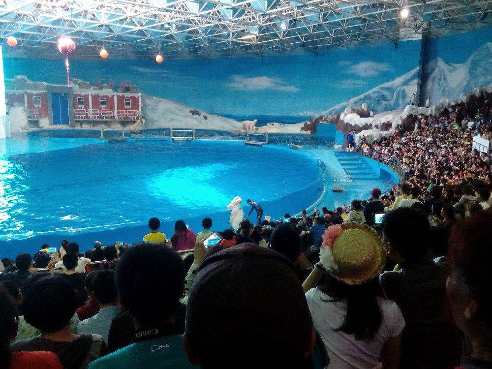 青岛海昌极地海洋公园