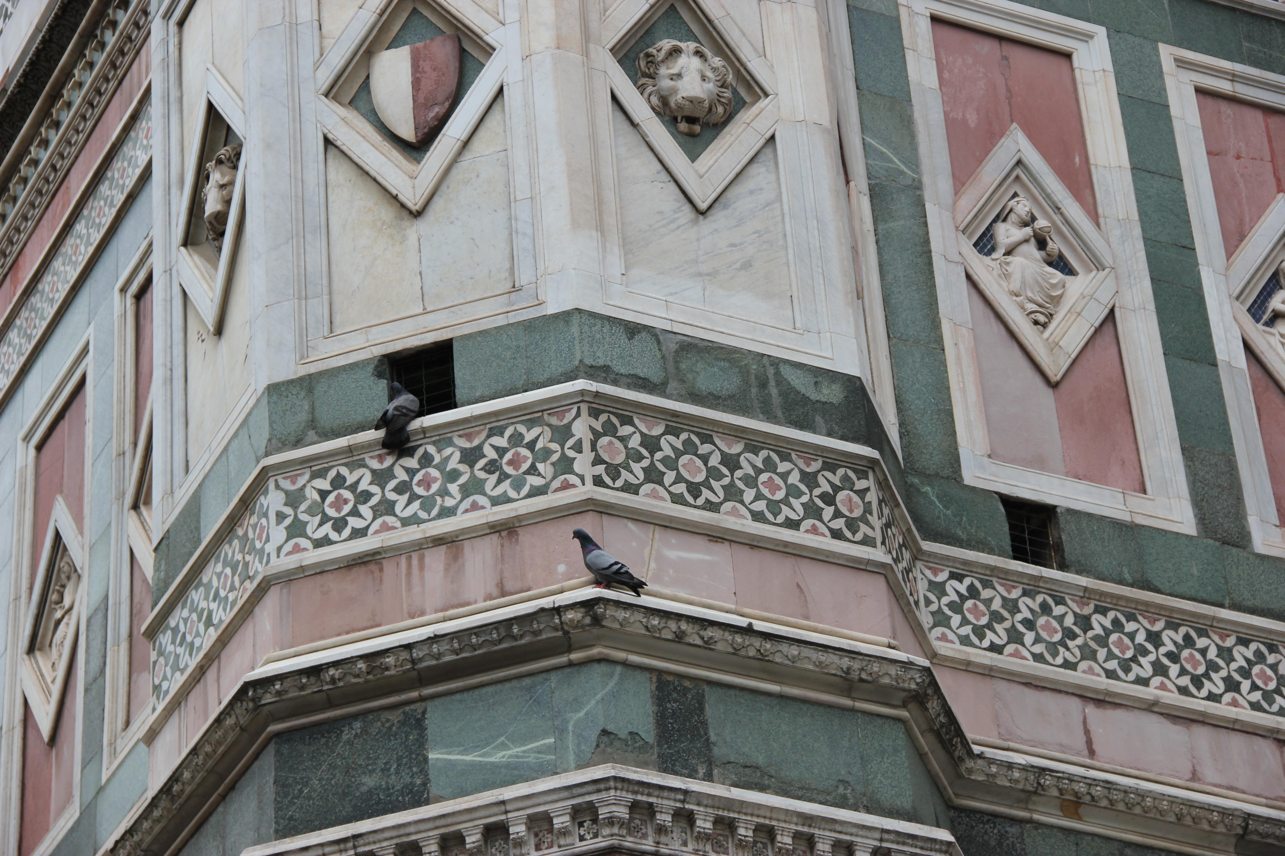 位于圣母百花大教堂边上,有种拨地而起的感觉,是一座哥特式建筑的钟楼图片