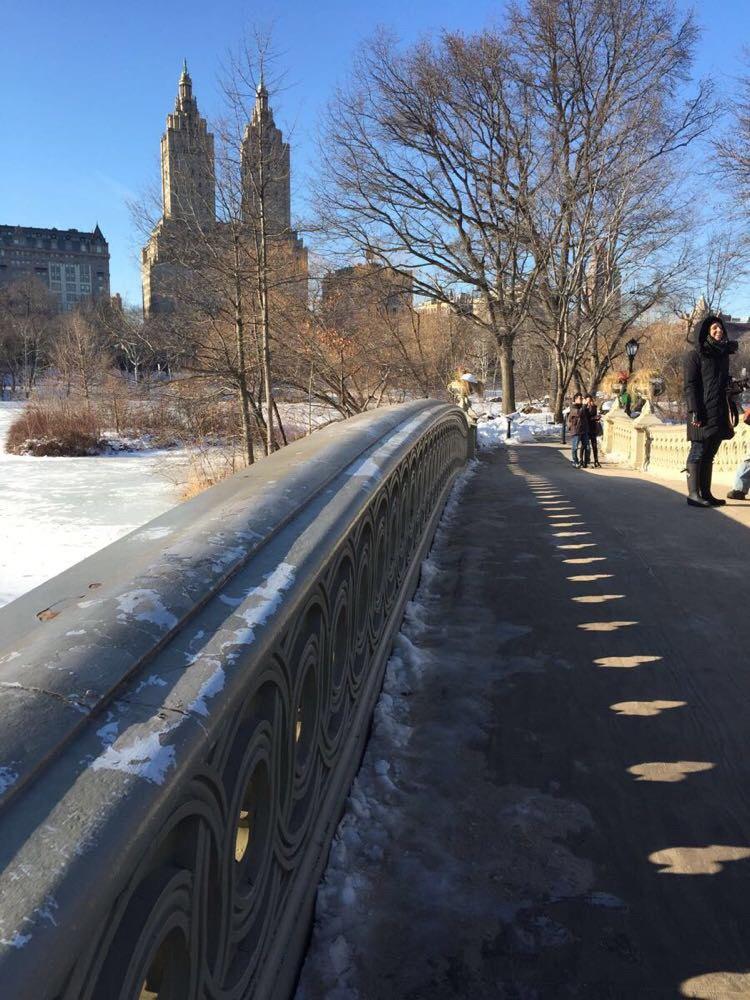 中央公园 手绘 纽约图片