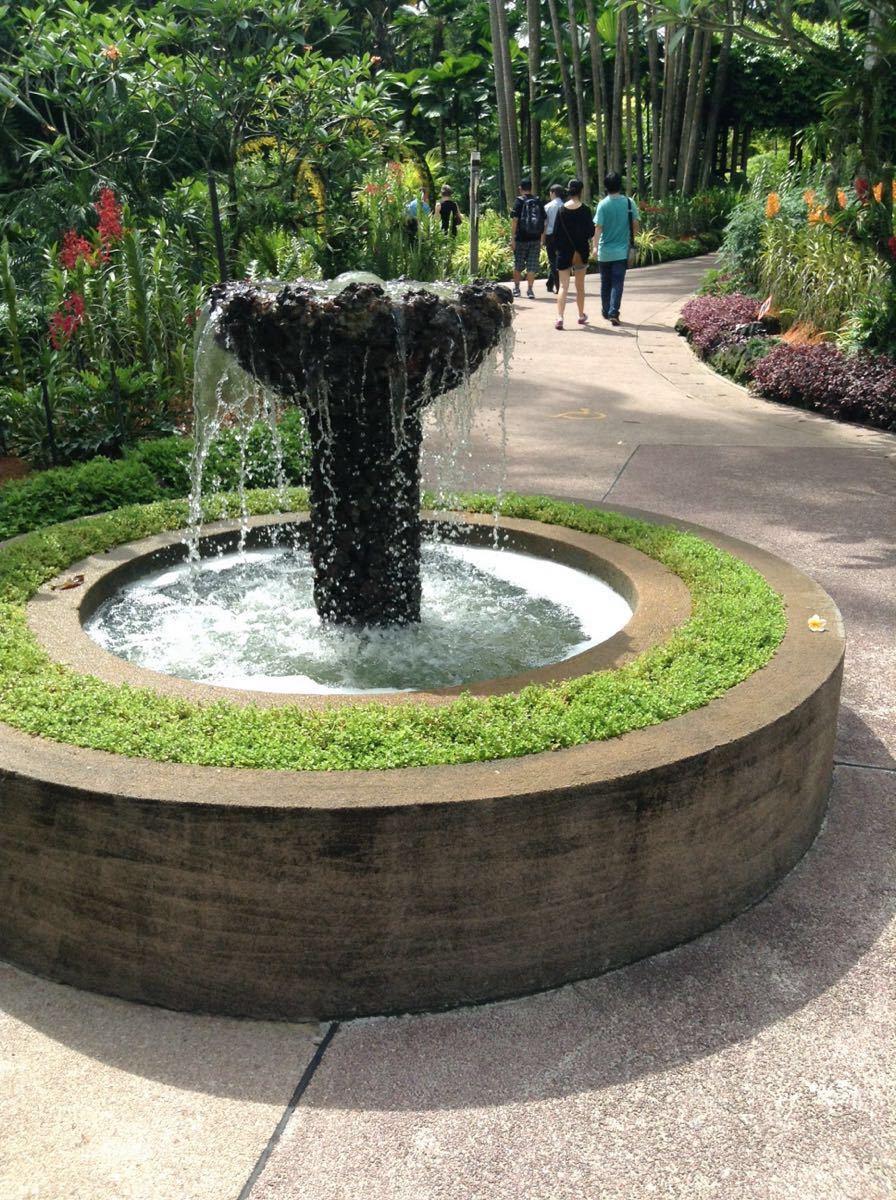 新加坡植物园