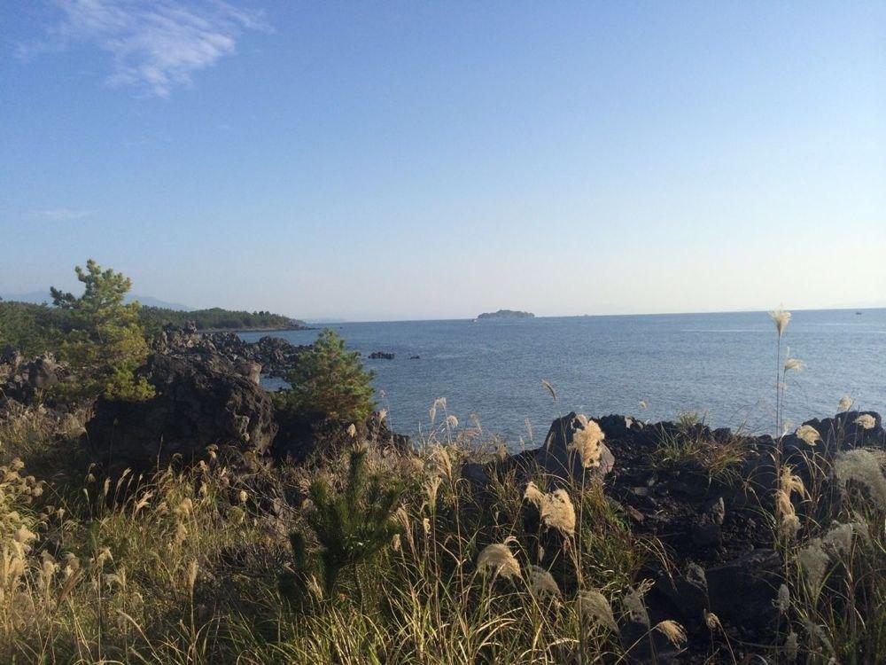 一个人,九州岛,秋 - 鹿儿岛游记攻略【携程攻略】