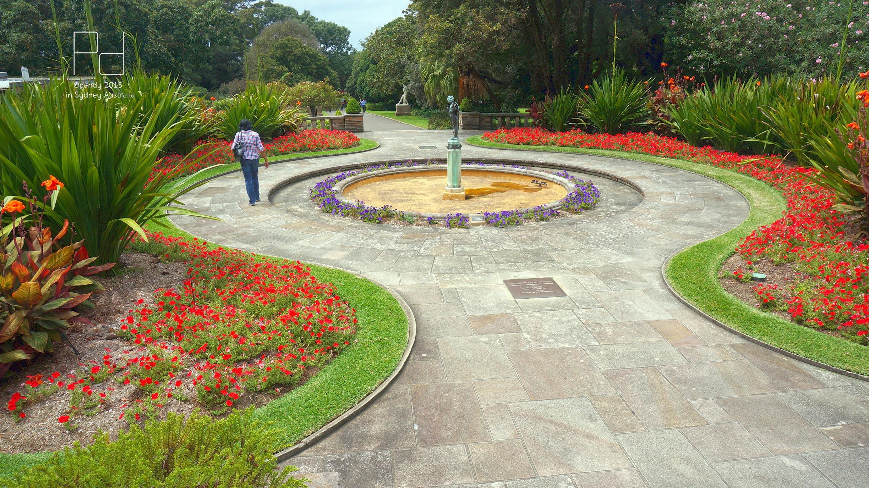 皇家植物园,悉尼皇家植物园攻略/地址/图片/门票