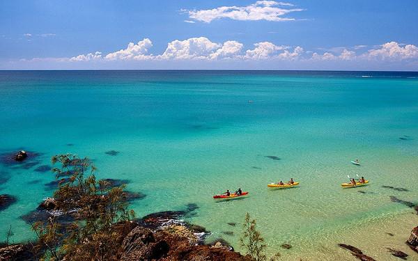 悉尼-布里斯班阳光海岸之旅设有蹦极的旅游景点图片