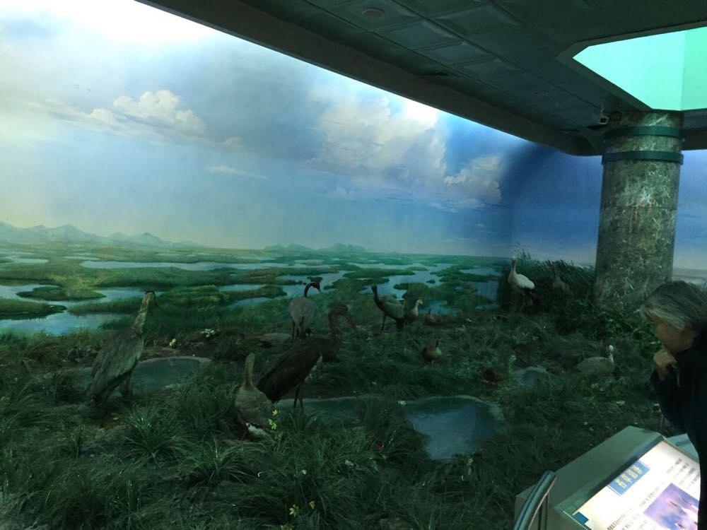大连自然博物馆,圣亚海洋世界