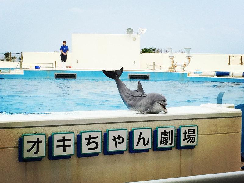 冲绳景点手绘图