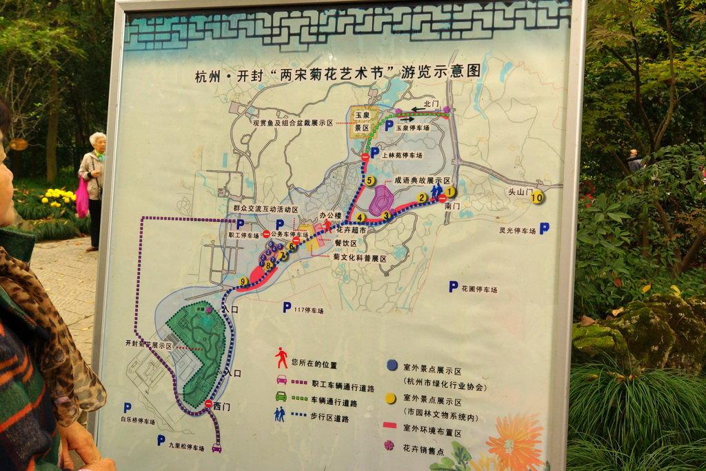 杭州植物园(4)