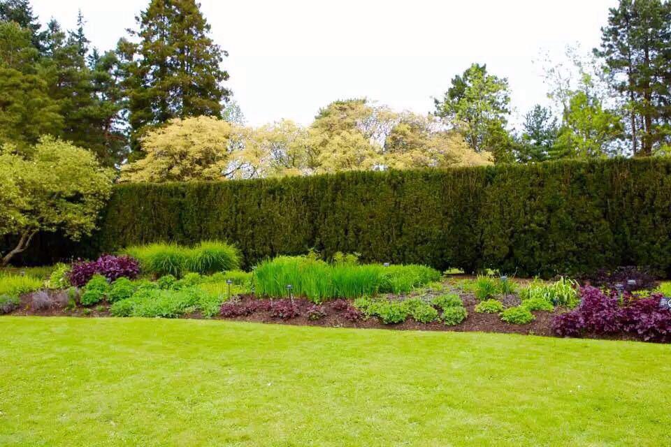 范度森植物园