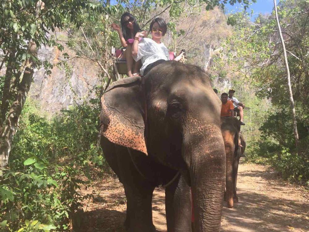 泰国黑白花纹大象裤子