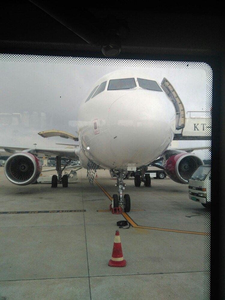青岛到上海飞机吃什么