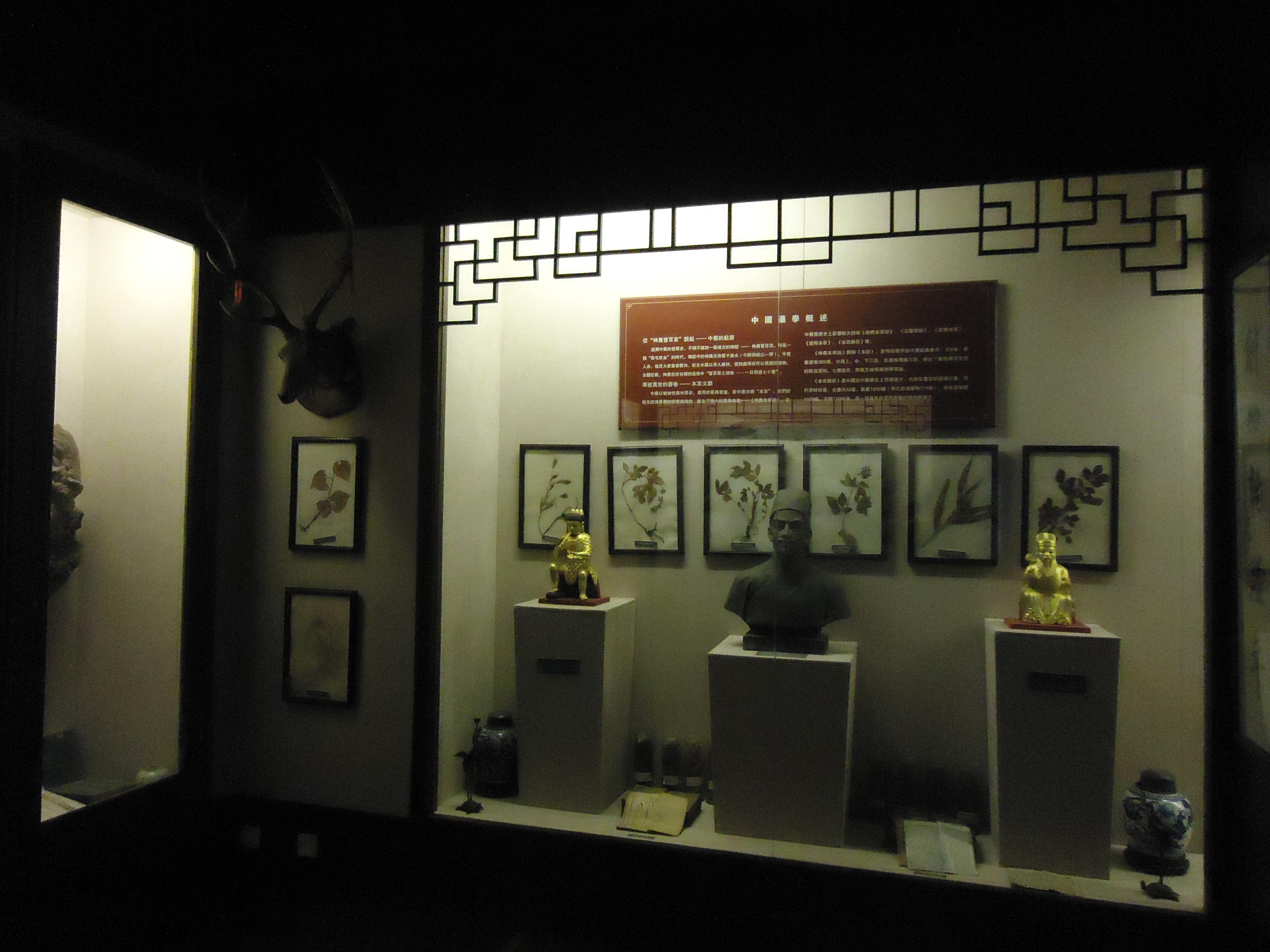 随手拍之童涵春中药博物馆