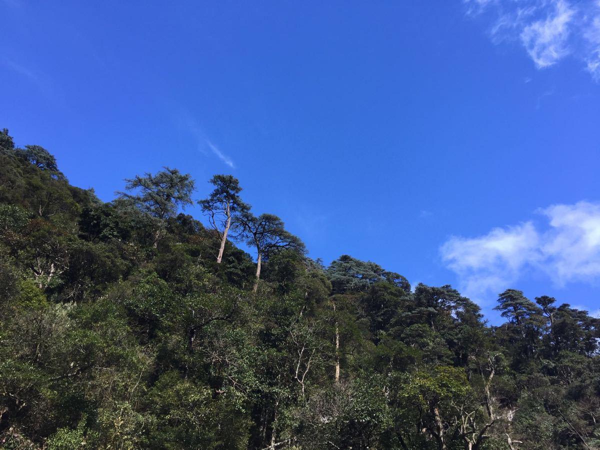 关西国家森林公园旅游景点攻攻略南岭路线v攻略略图图片