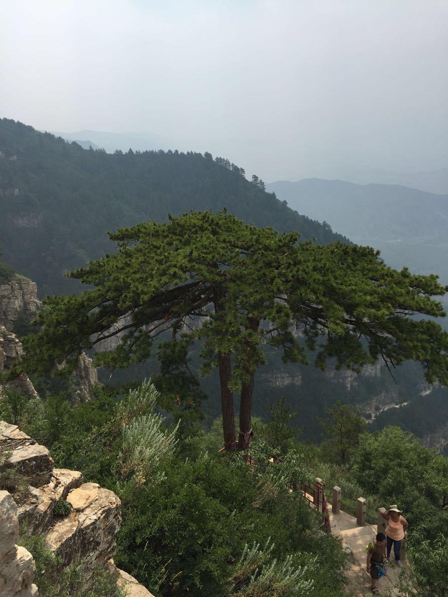 【携程攻略】山西恒山景点,北岳恒山,名不虚传!风景