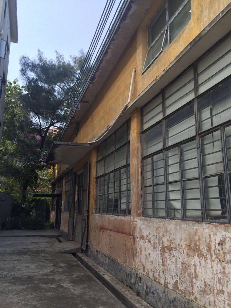 广州员村红砖厂一日游图片