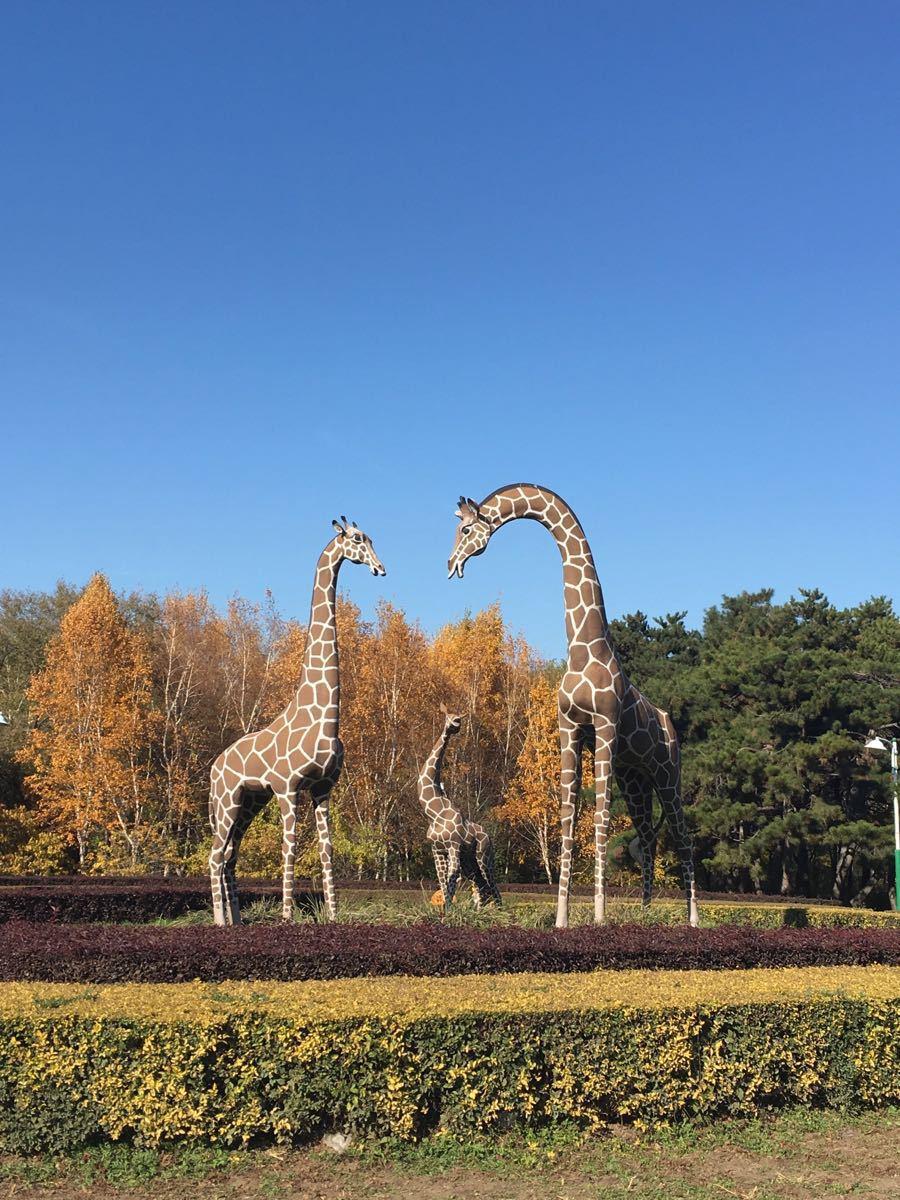 春动植物公园景点