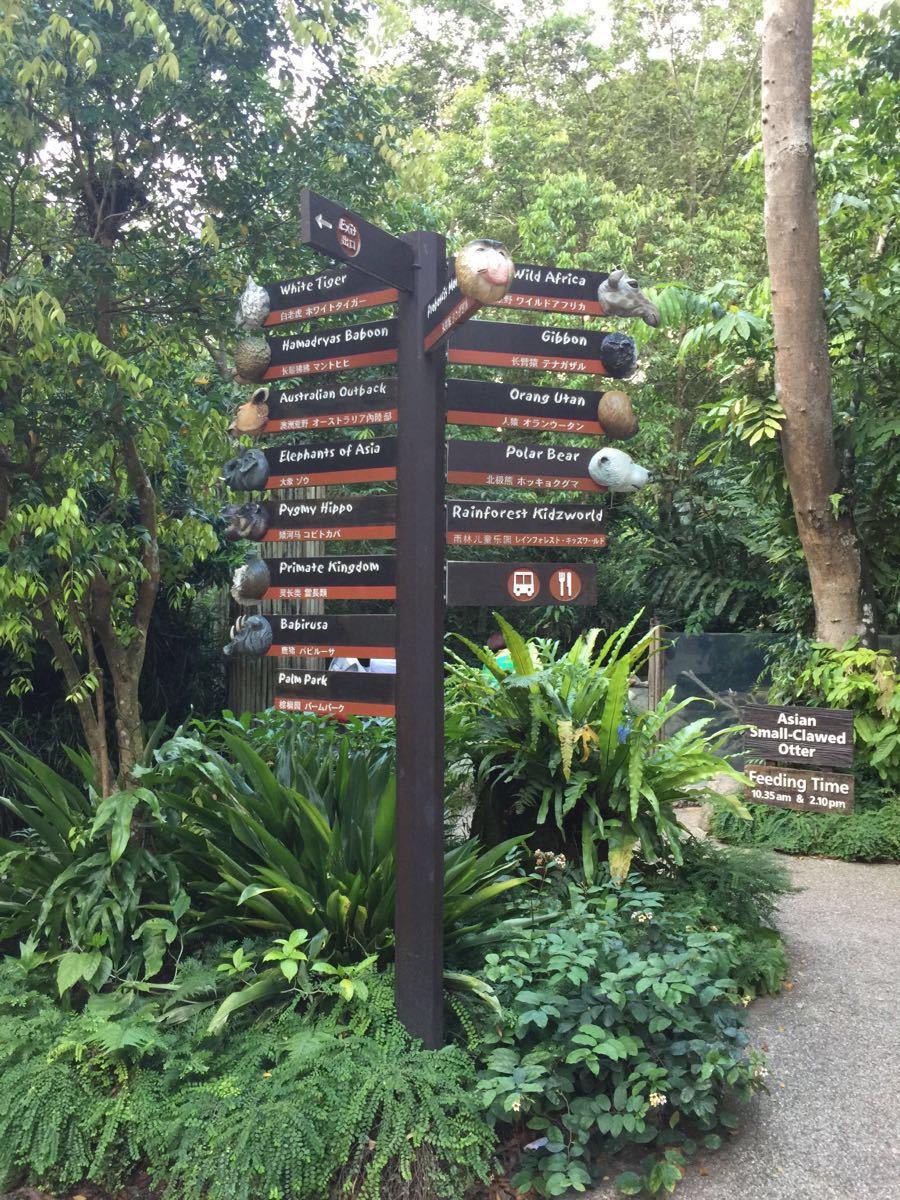 【携程攻略】新加坡新加坡动物园适合家庭亲子旅游吗
