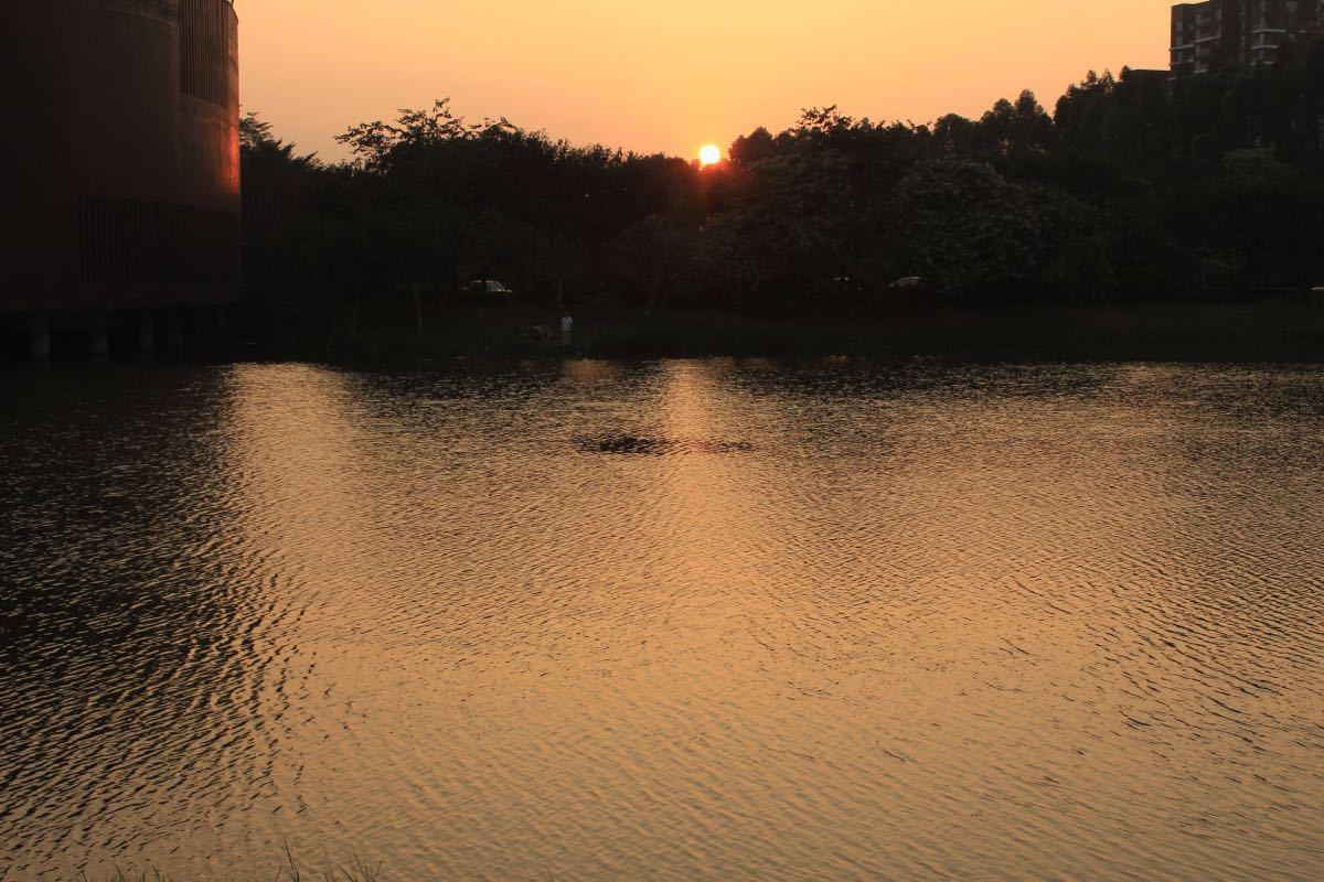 【携程攻略】广东松山湖景点,出来的时候很难打车.巨.