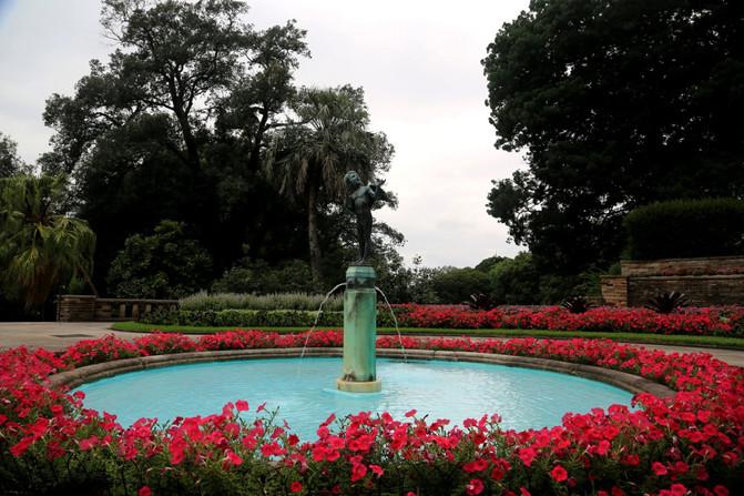 悉尼、堪培拉21日自由行⒁悉尼6-模型植物园-用什么软件给3d贴图绘制皇家图片