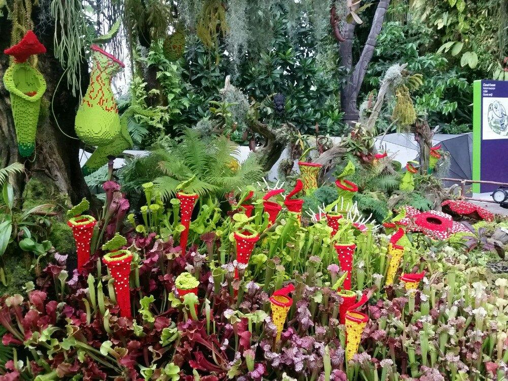 【携程攻略】新加坡新加坡滨海湾花园好玩吗