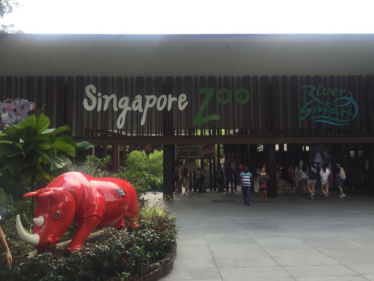 新加坡植物园免费,里面植物很繁茂,管理也很到位,因为不收费,所以很多设施很质朴,没有商业化气息,让人感觉很舒服,尤其是从中国大陆来的,会感受更深,真的会感觉大好山河,我可以享用,而不是都是别人的,看一眼也要收费!公共区里,一段区域会设置免费饮水设备,很方便。很贴心!
