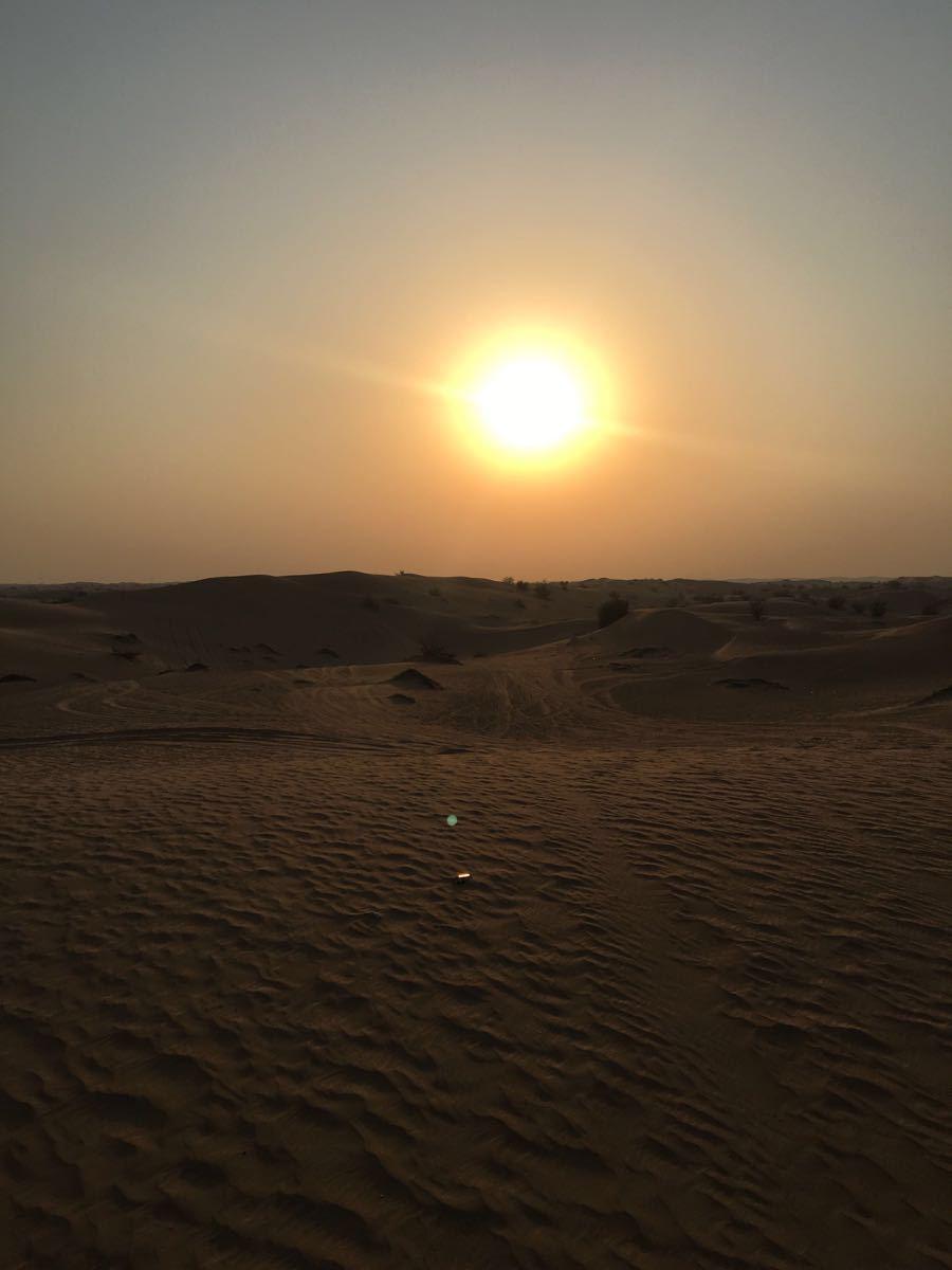 微信头像风景沙漠