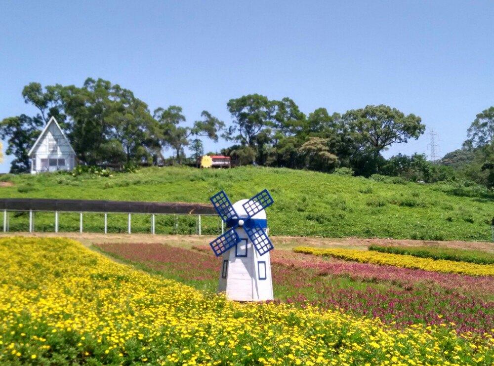 【携程攻略】台湾桃园大溪花海农场好玩吗图片