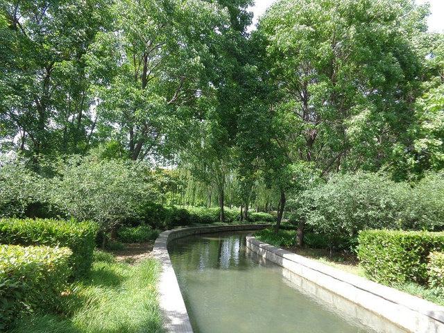 隋唐城遗址植物园位于洛阳市洛龙区王城大道旁边,挨着洛阳王城博物馆