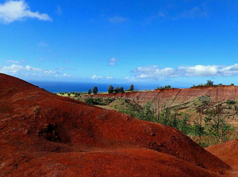 【携程攻略】夏威夷可爱岛威美亚峡谷好玩吗,夏威夷威