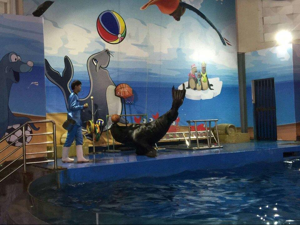 壁纸 海底 海底世界 海洋馆 水族馆 960_721