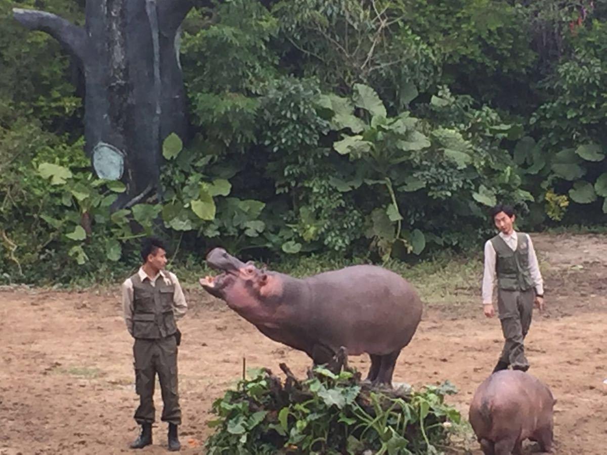 地处广州番禺;公园以大规模野生动物种群放养和自驾车观赏为特色,集动
