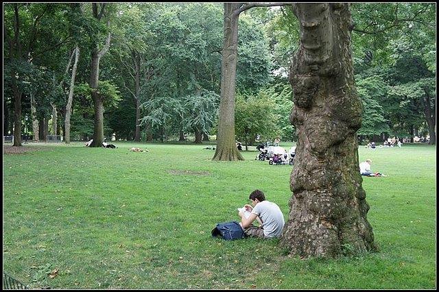 中央公园边上竟然还有个动物园,小朋友都好欢乐.
