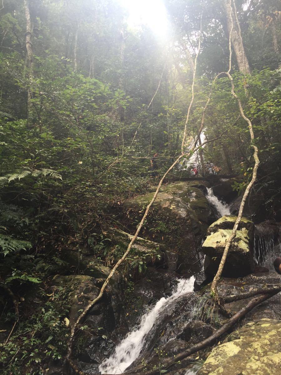永春牛姆林自然保护区好玩吗,永春牛姆林自然保护区样图片