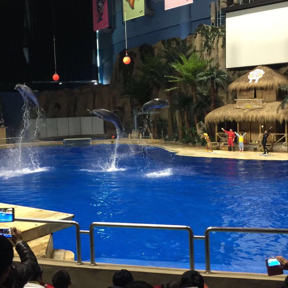 北京海洋馆一日游 - 北京游记攻略【携程攻略】